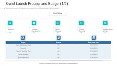 Organizational Development And Promotional Plan Brand Launch Process And Budget Audit Icons PDF