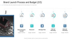 Organizational Development And Promotional Plan Brand Launch Process And Budget Research Portrait PDF