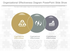 Organizational Effectiveness Diagram Powerpoint Slide Show