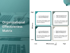 Organizational Effectiveness Matrix Ppt PowerPoint Presentation Professional Gallery