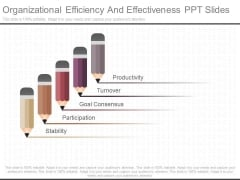 Organizational Efficiency And Effectiveness Ppt Slides