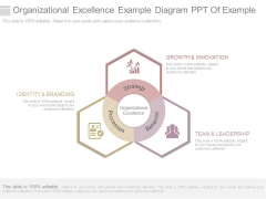 Organizational Excellence Example Diagram Ppt Of Example