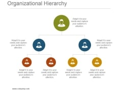 Organizational Hierarchy Powerpoint Presentation