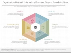 Organizational Issues In International Business Diagram Powerpoint Show