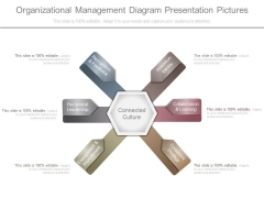 Organizational Management Diagram Presentation Pictures