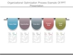 Organizational Optimization Process Example Of Ppt Presentation