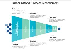 Organizational Process Management Ppt PowerPoint Presentation Deck Cpb