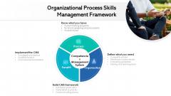 Organizational Process Skills Management Framework Ppt PowerPoint Presentation File Information PDF