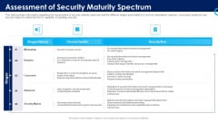 Organizational Security Solutions Assessment Of Security Maturity Spectrum Rules PDF