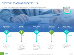 Organizational Socialization CLIENT ONBOARDING PROCESS Diligence Ppt File Example File PDF