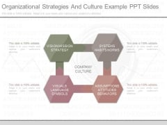 Organizational Strategies And Culture Example Ppt Slides