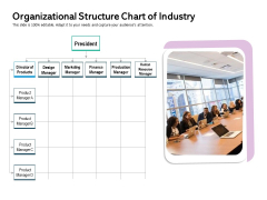 Organizational Structure Chart Of Industry Ppt PowerPoint Presentation Outline Graphics Download PDF
