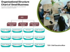 Organizational Structure Chart Of Small Business Ppt PowerPoint Presentation Summary Show PDF