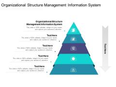 Organizational Structure Management Information System Ppt PowerPoint Presentation Model Portrait Cpb Pdf