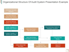 Organizational Structure Of Audit System Ppt PowerPoint Presentation Samples