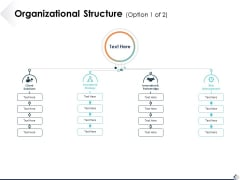 Organizational Structure Option 1 Of 2 Ppt PowerPoint Presentation Pictures Themes