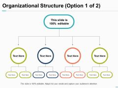 Organizational Structure Option Business Ppt PowerPoint Presentation Show