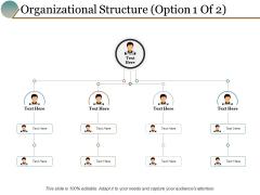 Organizational Structure Option Management Ppt PowerPoint Presentation Portfolio Themes