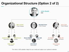 Organizational Structure Option Ppt PowerPoint Presentation Inspiration Objects