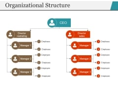 Organizational Structure Ppt PowerPoint Presentation File Icon