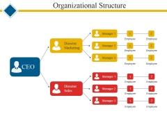 Organizational Structure Ppt PowerPoint Presentation Ideas Samples