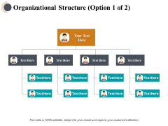 Organizational Structure Ppt PowerPoint Presentation Outline Layouts