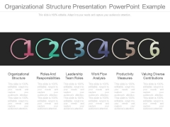 Organizational Structure Presentation Powerpoint Example
