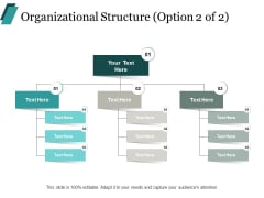 Organizational Structure Process Ppt PowerPoint Presentation Portfolio Graphic Images