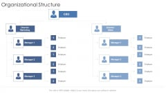 Organizational Structure Startup Business Strategy Ppt Gallery Icon PDF