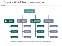 Organizational Structure Template 1 Ppt PowerPoint Presentation Ideas Graphic Images