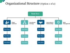 Organizational Structure Template Ppt PowerPoint Presentation Icon Example