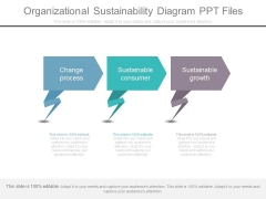 Organizational Sustainability Diagram Ppt Files