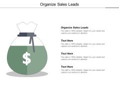 Organize Sales Leads Ppt PowerPoint Presentation Professional Ideas
