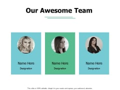 Our Awesome Team Introduction Ppt PowerPoint Presentation Summary Elements