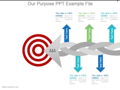 Our Purpose Ppt Example File