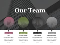Our Team Ppt PowerPoint Presentation Portfolio Example Introduction