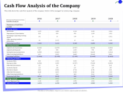 Outsourcing Of Finance And Accounting Processes Cash Flow Analysis Of The Company Guidelines PDF