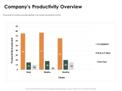 Outstanding Employee Companys Productivity Overview Ppt Summary Example PDF