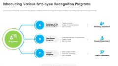 Outstanding Employee Introducing Various Employee Recognition Programs Slides PDF