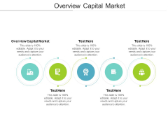 Overview Capital Market Ppt PowerPoint Presentation File Infographics Cpb