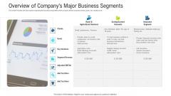 Overview Of Companys Major Business Segments Portrait PDF