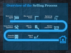 Overview Of The Selling Process Ppt PowerPoint Presentation Example File
