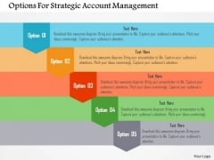 Options For Strategic Account Management Presentation Template