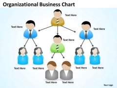 Organisational Business Chart Ppt Simple Plan Example PowerPoint Templates