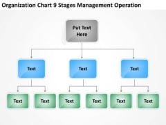 Organization Chart 9 Stages Management Operation Ppt How To Business Plan PowerPoint Templates