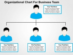Organizational Chart For Business Team PowerPoint Template