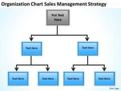 Organization Chart Sales Management Strategy Ppt Business Plan PowerPoint Slides