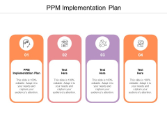 PPM Implementation Plan Ppt PowerPoint Presentation Icon Format Cpb