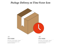 Package Delivery On Time Vector Icon Ppt PowerPoint Presentation Ideas Format Ideas PDF