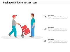 Package Delivery Vector Icon Ppt PowerPoint Presentation Inspiration Outfit PDF